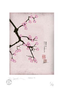 Cherry Blossom Print - Sakura 6